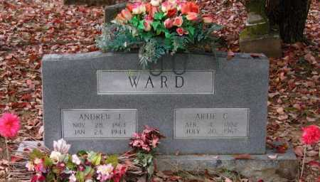 "WARD, ANDREW ""ANDY"" JACKSON - Lawrence County, Arkansas 