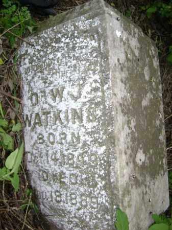 WATKINS, MD, J. W. - Lawrence County, Arkansas | J. W. WATKINS, MD - Arkansas Gravestone Photos