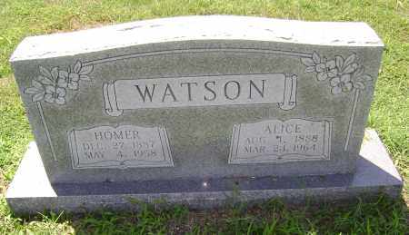 WATSON, HOMER - Lawrence County, Arkansas | HOMER WATSON - Arkansas Gravestone Photos
