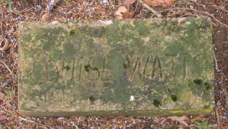 WATTS, LOUISE - Lawrence County, Arkansas | LOUISE WATTS - Arkansas Gravestone Photos