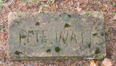 WATTS, PETE - Lawrence County, Arkansas | PETE WATTS - Arkansas Gravestone Photos