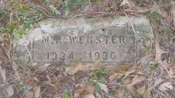 WEBSTER, M. A. - Lawrence County, Arkansas | M. A. WEBSTER - Arkansas Gravestone Photos