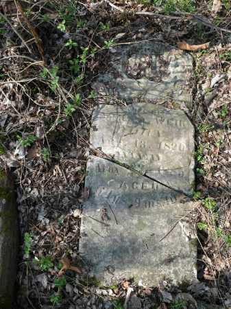 SLOAN WEIR, SARAH ELIZABETH - Lawrence County, Arkansas | SARAH ELIZABETH SLOAN WEIR - Arkansas Gravestone Photos
