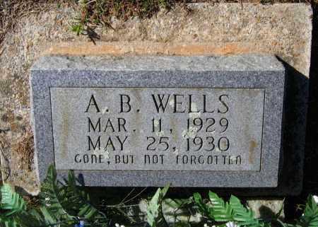 "WELLS, ABRAM B.  ""A. B."" - Lawrence County, Arkansas | ABRAM B.  ""A. B."" WELLS - Arkansas Gravestone Photos"