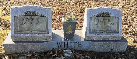 WHITE, BOYCE CARTER - Lawrence County, Arkansas   BOYCE CARTER WHITE - Arkansas Gravestone Photos