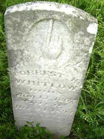 WHITLOW, FOREST H. - Lawrence County, Arkansas | FOREST H. WHITLOW - Arkansas Gravestone Photos