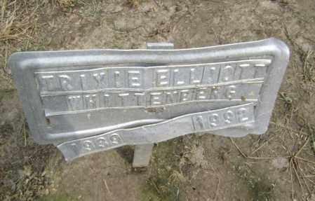 ELLIOTT WHITTENBERG, TRIXIE - Lawrence County, Arkansas | TRIXIE ELLIOTT WHITTENBERG - Arkansas Gravestone Photos