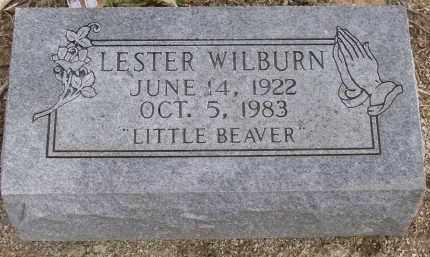 WILBURN, LESTER - Lawrence County, Arkansas   LESTER WILBURN - Arkansas Gravestone Photos