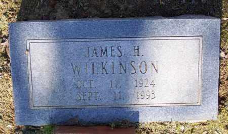 WILKINSON, JAMES H. - Lawrence County, Arkansas | JAMES H. WILKINSON - Arkansas Gravestone Photos