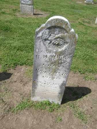 WILKS, B. H. - Lawrence County, Arkansas | B. H. WILKS - Arkansas Gravestone Photos