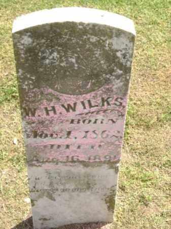 WILKS, W. H. - Lawrence County, Arkansas | W. H. WILKS - Arkansas Gravestone Photos