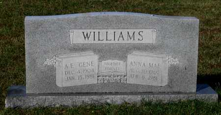 """WILLIAMS, ADOLPH EUGENE """"GENE"""" - Lawrence County, Arkansas   ADOLPH EUGENE """"GENE"""" WILLIAMS - Arkansas Gravestone Photos"""