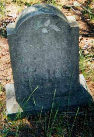 WILLMUTH, ARRETUS - Lawrence County, Arkansas | ARRETUS WILLMUTH - Arkansas Gravestone Photos