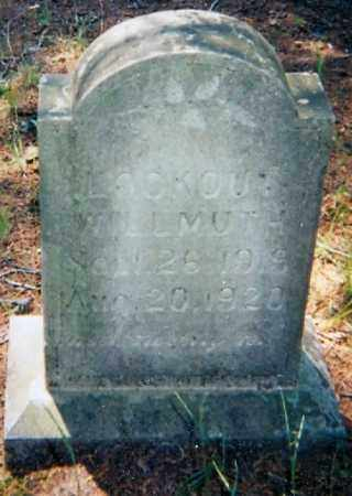 WILLMUTH, LOOKOUT - Lawrence County, Arkansas | LOOKOUT WILLMUTH - Arkansas Gravestone Photos
