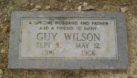 WILSON, GUY - Lawrence County, Arkansas | GUY WILSON - Arkansas Gravestone Photos