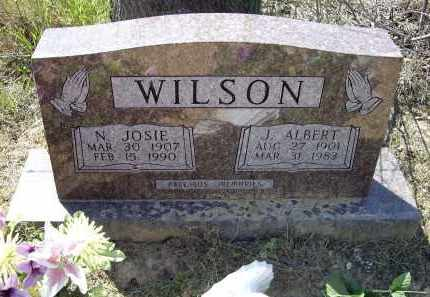 WILSON, JAMES ALBERT - Lawrence County, Arkansas | JAMES ALBERT WILSON - Arkansas Gravestone Photos