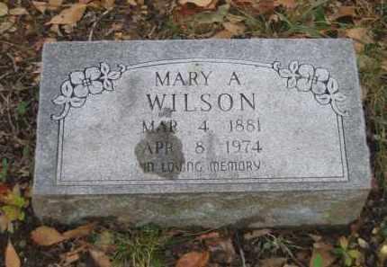 WILSON, MARY A. - Lawrence County, Arkansas | MARY A. WILSON - Arkansas Gravestone Photos