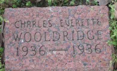 WOOLDRIDGE, CHARLES EVERETTE - Lawrence County, Arkansas | CHARLES EVERETTE WOOLDRIDGE - Arkansas Gravestone Photos