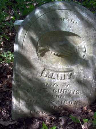 CURTIS, MARY - Lee County, Arkansas | MARY CURTIS - Arkansas Gravestone Photos