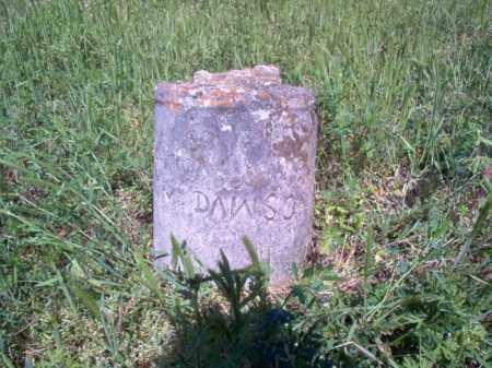 DAWSON, M - Lee County, Arkansas | M DAWSON - Arkansas Gravestone Photos