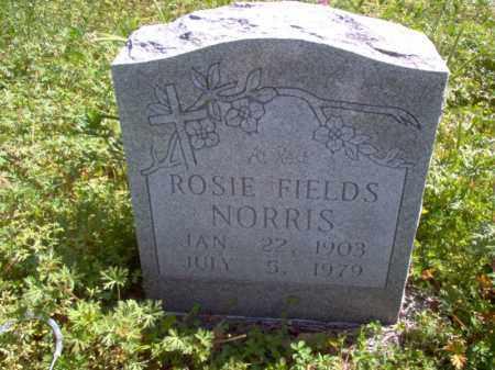 FIELDS NORRIS, ROSIE - Lee County, Arkansas | ROSIE FIELDS NORRIS - Arkansas Gravestone Photos