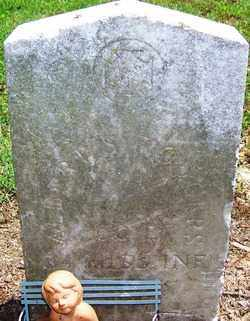 RODGERS (VETERAN CSA), ALBERT S - Lee County, Arkansas | ALBERT S RODGERS (VETERAN CSA) - Arkansas Gravestone Photos