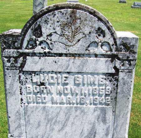SIMS, LUDIE - Lee County, Arkansas | LUDIE SIMS - Arkansas Gravestone Photos