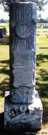 SPIVEY, E T - Lee County, Arkansas   E T SPIVEY - Arkansas Gravestone Photos