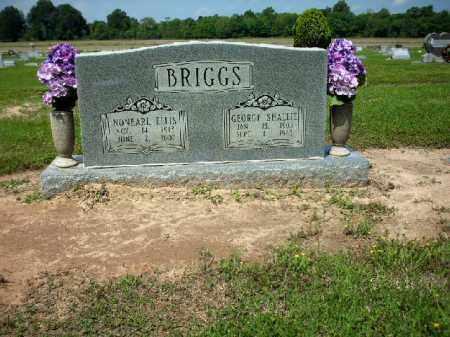 BRIGGS, GEORGE SHALLIE - Lincoln County, Arkansas | GEORGE SHALLIE BRIGGS - Arkansas Gravestone Photos