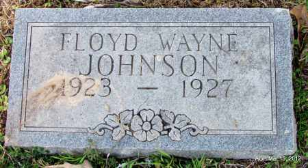 JOHNSON, FLOYD WAYNE - Lincoln County, Arkansas | FLOYD WAYNE JOHNSON - Arkansas Gravestone Photos