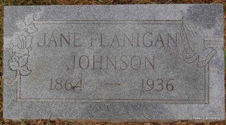 JOHNSON, JANE - Lincoln County, Arkansas   JANE JOHNSON - Arkansas Gravestone Photos