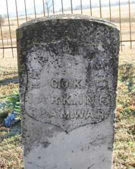 ANDERSON (VETERAN SAW), T H - Logan County, Arkansas | T H ANDERSON (VETERAN SAW) - Arkansas Gravestone Photos