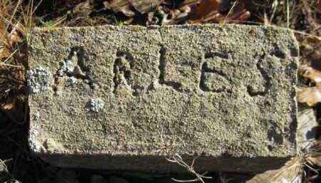 ARLES, UNKNOWN - Logan County, Arkansas   UNKNOWN ARLES - Arkansas Gravestone Photos