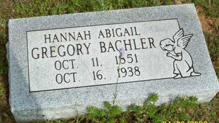 GREGORY BACHLER, HANNAH ABIGAIL - Logan County, Arkansas | HANNAH ABIGAIL GREGORY BACHLER - Arkansas Gravestone Photos