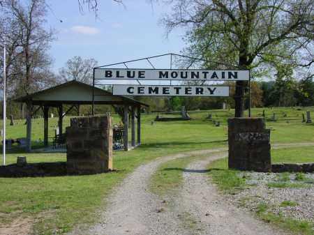 *GATE AND SIGN,  - Logan County, Arkansas |  *GATE AND SIGN - Arkansas Gravestone Photos