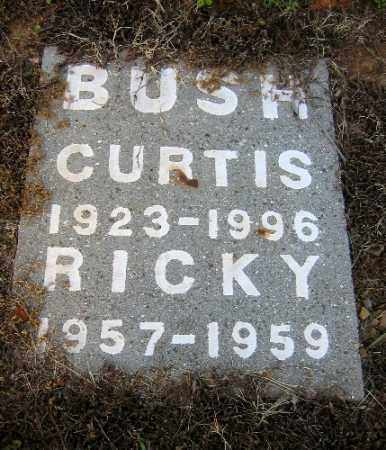 BUSH, CURTIS - Logan County, Arkansas | CURTIS BUSH - Arkansas Gravestone Photos