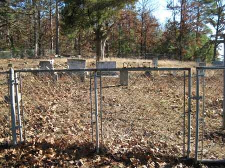 *  OVERVIEW,  - Logan County, Arkansas    *  OVERVIEW - Arkansas Gravestone Photos