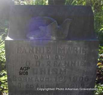 CHISM, FANNIE MARIE - Logan County, Arkansas | FANNIE MARIE CHISM - Arkansas Gravestone Photos