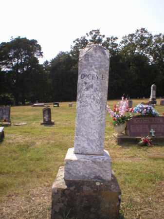 COLEMAN, DICEY ELIZABETH - Logan County, Arkansas | DICEY ELIZABETH COLEMAN - Arkansas Gravestone Photos