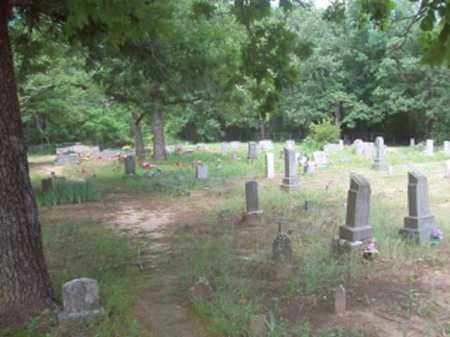 *  OVERVIEW,  - Logan County, Arkansas |  *  OVERVIEW - Arkansas Gravestone Photos