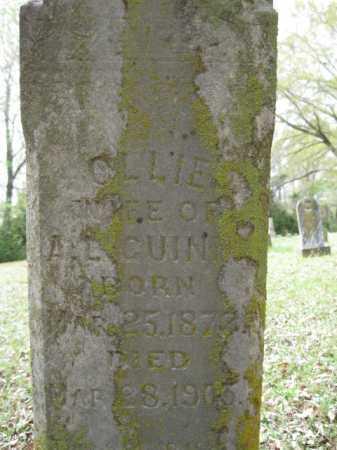 GUINN, OLLIE - Logan County, Arkansas | OLLIE GUINN - Arkansas Gravestone Photos
