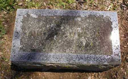 HEATHCOAT, SARAH LUCINDA - Logan County, Arkansas | SARAH LUCINDA HEATHCOAT - Arkansas Gravestone Photos