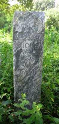 HICKS, JOHN F - Logan County, Arkansas | JOHN F HICKS - Arkansas Gravestone Photos