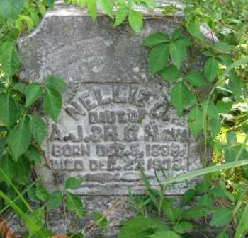 HICKS, NELLIE D - Logan County, Arkansas | NELLIE D HICKS - Arkansas Gravestone Photos