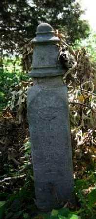 HICKS, S E - Logan County, Arkansas | S E HICKS - Arkansas Gravestone Photos