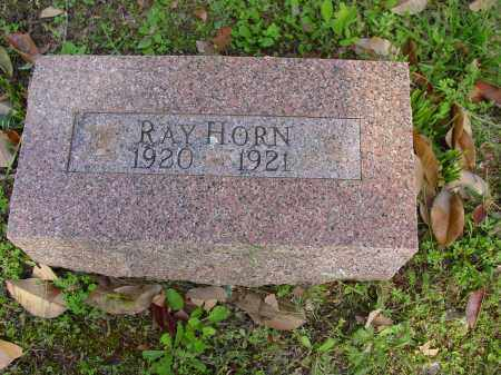 HORN, RAY - Logan County, Arkansas | RAY HORN - Arkansas Gravestone Photos