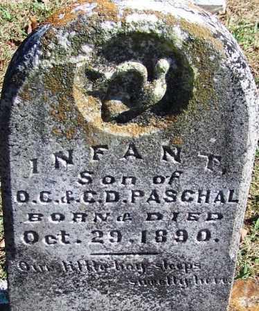 PASCHAL, INFANT SON - Logan County, Arkansas | INFANT SON PASCHAL - Arkansas Gravestone Photos