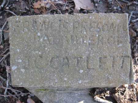 PRESONEL, FRANNIE - Logan County, Arkansas   FRANNIE PRESONEL - Arkansas Gravestone Photos