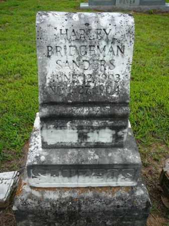 SANDERS, HARLEY B - Logan County, Arkansas | HARLEY B SANDERS - Arkansas Gravestone Photos