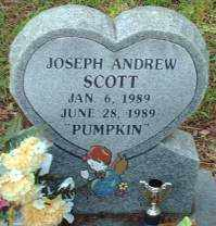 SCOTT, JOSEPH ANDREW - Logan County, Arkansas | JOSEPH ANDREW SCOTT - Arkansas Gravestone Photos
